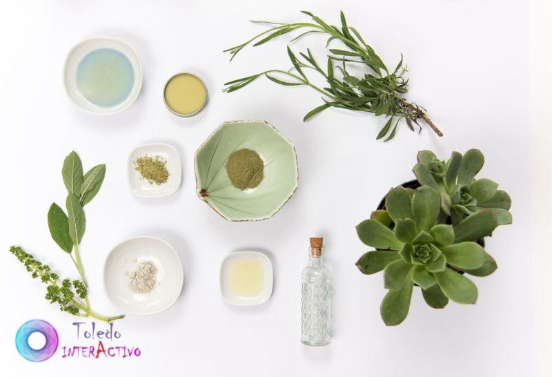 Cuidados de la piel a base de plantas